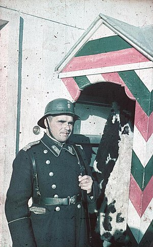 Military history of Bulgaria during World War II - A Bulgarian sentry at his post, Sofia, 1942