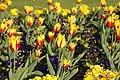 Bury St Edmunds 22 April 2007 133ec (471748057).jpg