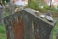Buttenhausen-5815.jpg