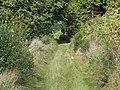 Byway near Bulford - geograph.org.uk - 952634.jpg