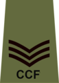 CCF Sergeant Instructor rank slide.png