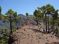 Caldera de Taburiente (La Palma, Islas Canarias, España) 03.JPG