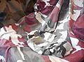 Camouflage (cloth).jpg