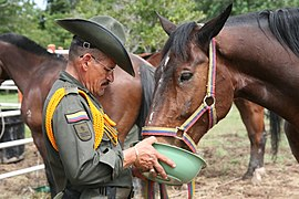 Carabineros de la Policía Nacional de Colombia (5513226639).jpg