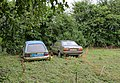 Cars and chickens, Birch Grove, Chilbolton - geograph.org.uk - 822662.jpg