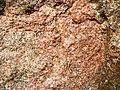 Cartier Granite (Neoarchean; 2.642 Ga; Windy Lake Northwest roadcut, Sudbury Impact Structure, Ontario, Canada) 2 (32792317047).jpg
