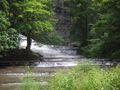 Cascadilla Creek.jpg
