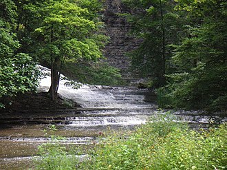 Upland and lowland - Cascadilla Creek, near Ithaca, New York in the United States, an example of an upland river habitat.