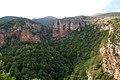 Castellar de n´Hug - panoramio.jpg