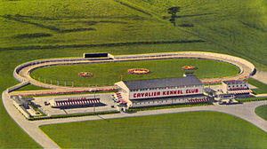 Gambling in North Carolina - Postcard of the Cavalier Kennel Club in Moyock