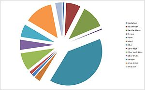 Wembley - A pie chart showing the ethnic makeup of central Wembley in 2001