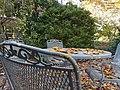 Chadwick Arboretum (31124068706).jpg