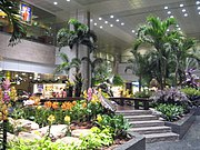 Extensive foliage in Terminal 2 provides relaxation for passengers in the transit area.