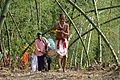 Charak Puja Procession - Narna - Howrah 2014-04-14 0400.JPG