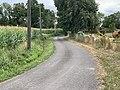 Chemin Bief Arçon Vonnas 2.jpg