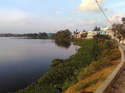 Pics: Chitlapakkam Lake & Walkway, Chennai