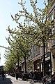 Choorstraat Delft 2018 3.jpg