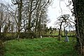 Church yard - geograph.org.uk - 730186.jpg