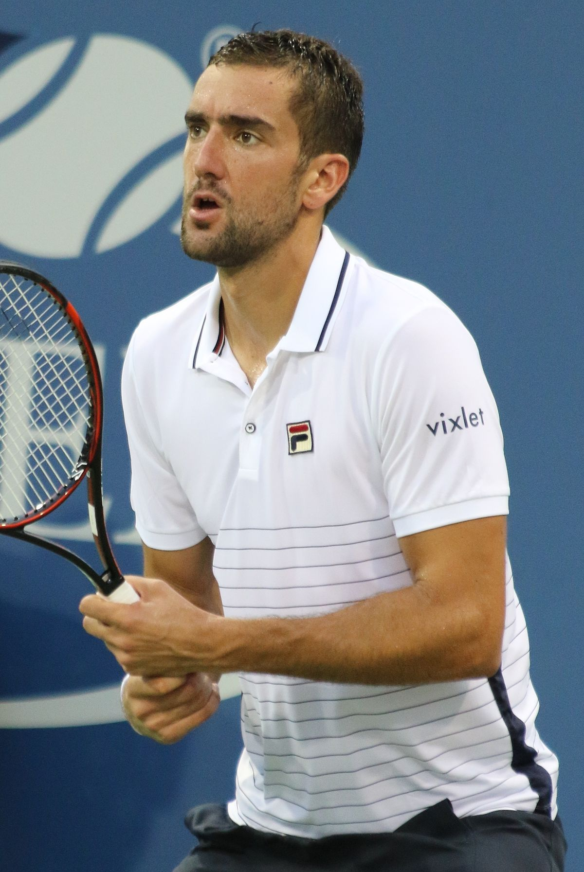 Cilic and Baghdatis will play at inaugural Mercedes Cup on ... |Marin Cilic Tennis Player