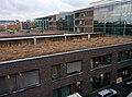 Closeup of Physics Building, Goethe University.jpg