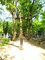 Cmentarz św. Jerzego w Toruniu2015.jpg