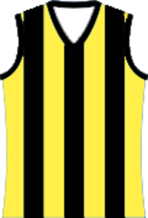 Murray Football League - Image: Cobram Tigers Football Team Jumper