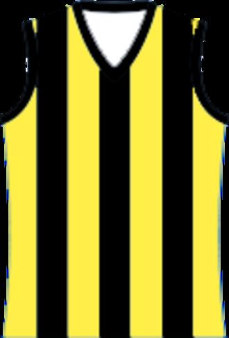 Murray Football League - Image: Cobram Tigers Football Team Jumper