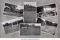 Collage of photos from 1917 Pitt preseason training at Camp Hamilton, Windber, PA.jpg