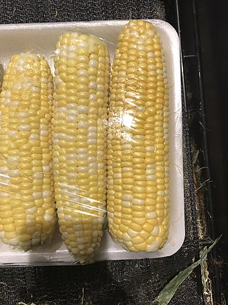 Veggie burger - Fresh corn ready for production
