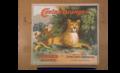 Covina oranges cougar brand fruit crate label 1920.png