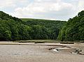 Creek near Aveton Gifford.jpg