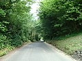 Crockenhill Lane, Eynsford - geograph.org.uk - 1362934.jpg