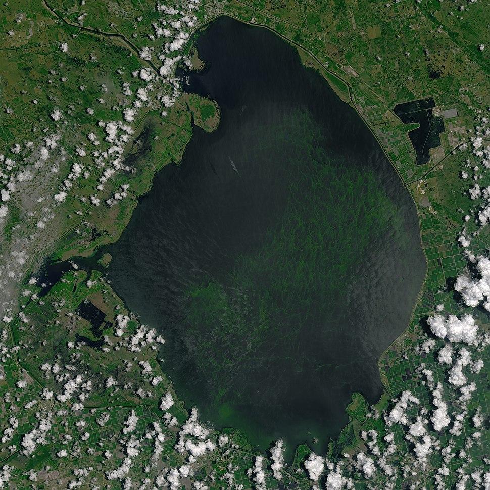 Cropped lake okeechobee oli 2016184 lrg