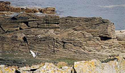 Cross-bedding in a fluviatile sandstone, Middle Old Red Sandstone (Devonian) on Bressay, Shetland Islands Crossbeddingbressay.jpg