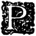 Cumanda - Letra P.png