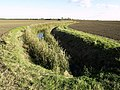 Curved Ditch - geograph.org.uk - 588297.jpg