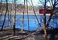 Czarne Lake Puszcza Zielonka.jpg