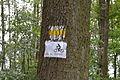 DEU-BB-MOL-Landschaftsschutzgebiet Niederungssystem des Fredersdorfer Mühlenfließes und seiner Vorfluter Mai 2015 - 09.JPG