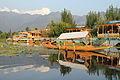 Dal Lake's sunset tour on a shikara - Srinagar (9967037416).jpg