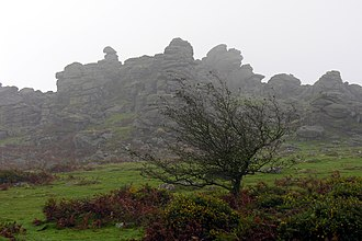 Hound Tor - View of Hound Tor