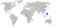 Range of arrownose dogfish (in blue)