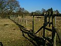 Deer fence near Copster Green - geograph.org.uk - 1745888.jpg