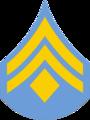 Delaware SP Corporal 1.png