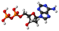 Deoxyadenosine-diphosphate-3D-balls.png