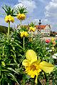 Der Schlosspark Weikersheim im Frühling. 06.jpg