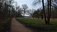 Dessau-Großkühnau, Brillenschötchen hill in Kühnauer Park.jpg