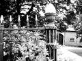 Detail tuinhek - Puttershoek - 20445803 - RCE.jpg