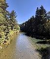 Dickey River upstream from Mora Road.jpg