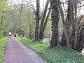 Die Alb zwischen Mühlburg und Daxlanden - panoramio (2).jpg