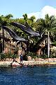 Dolphin Cove 50.jpg